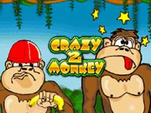 Видео-слот Crazy Monkey 2