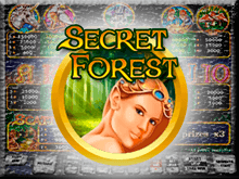 Игровой аппарат Таинственный Лес