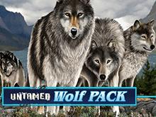 Игровой автомат Untamed Wolf Pack