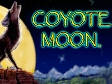 Топовый игровой автомат Coyote Moon